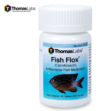 Fish Flox Ciprofloxacin 250 MG - 30-Count