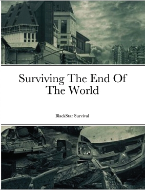 Surviving The End Of The World