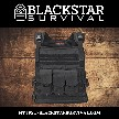 Wildcat General Issue Package w/ Level III+ Lightweight Plates - BlackStar Survival
